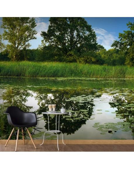 XXL stenska poslikava The Magic Pond II