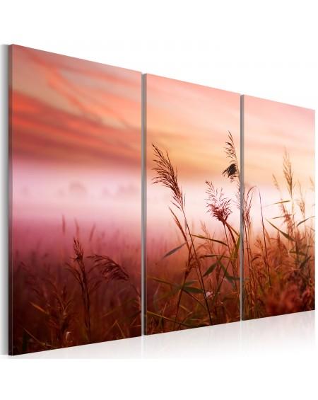 Slika A silent meadow