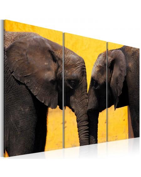 Slika Elephant kiss