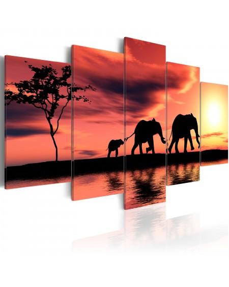 Slika African elephants family