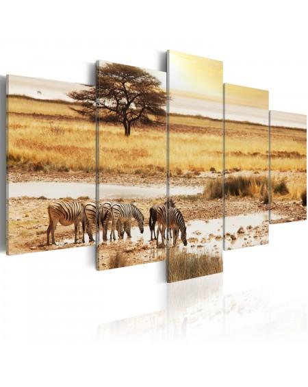 Slika Zebras on a savannah