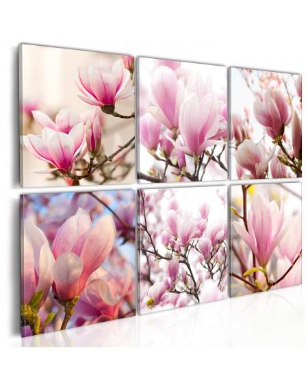Slika Southern magnolias
