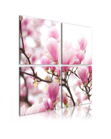 Slika Blooming magnolia tree
