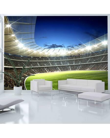 Stenska poslikava - National stadium