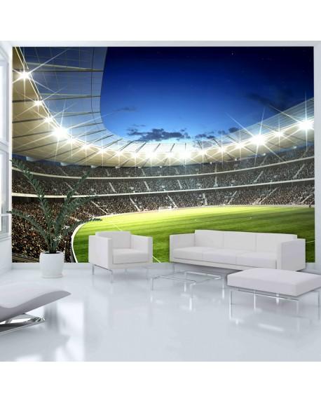 Stenska poslikava National stadium