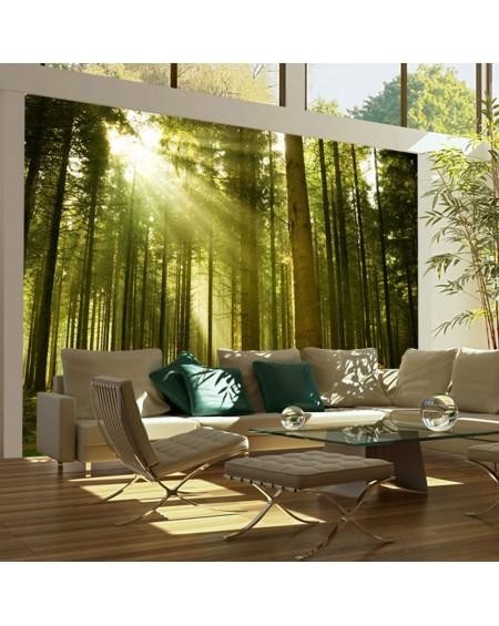 Stenska poslikava - Pine forest
