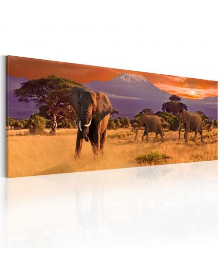 Slika March of african elephants