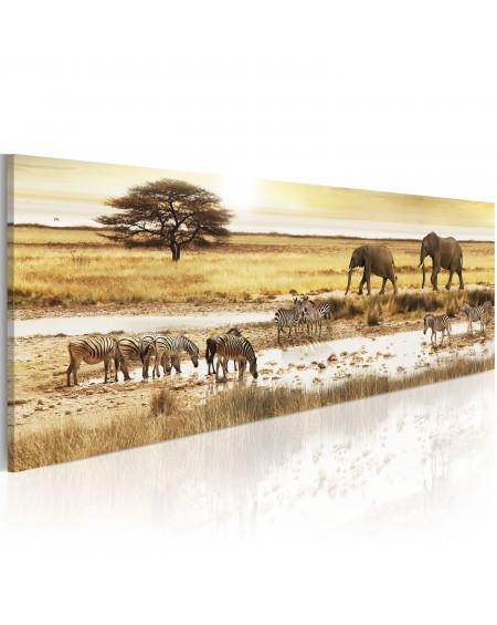 Slika Africa at the waterhole
