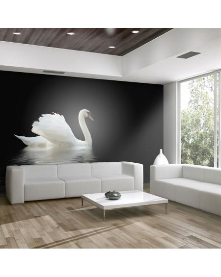 Stenska poslikava - swan (black and white)