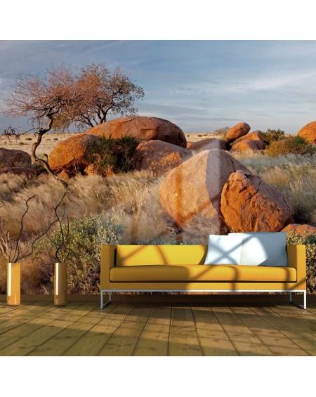 Stenska poslikava - African landscape, Namibia