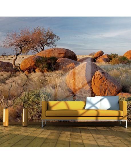 Stenska poslikava African landscape, Namibia