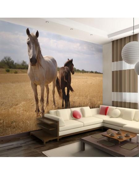 Stenska poslikava - Horse and foal