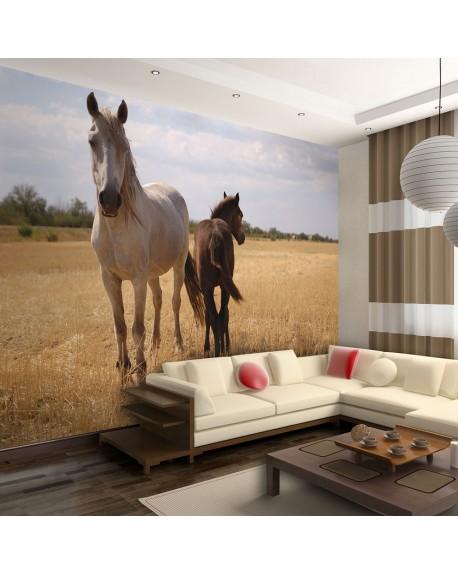 Stenska poslikava Horse and foal