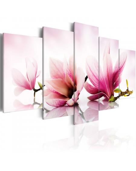 Slika Magnolias pink flowers