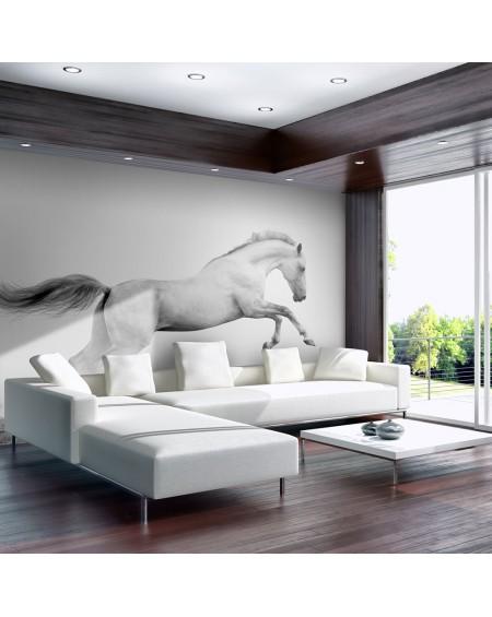 Stenska poslikava - White gallop
