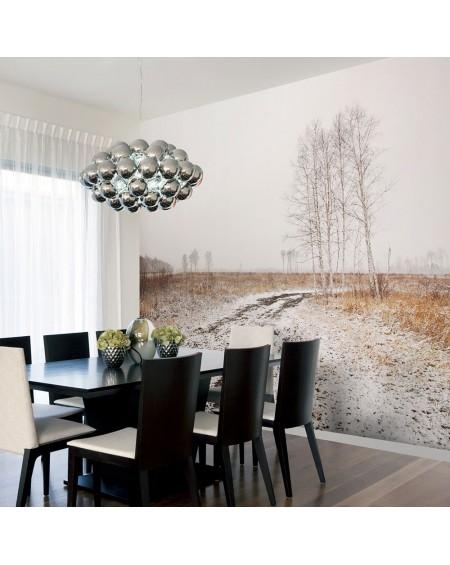 Stenska poslikava - Winter field