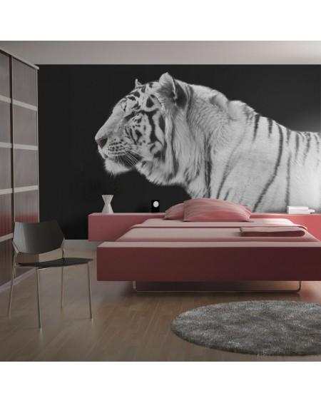Stenska poslikava - White tiger