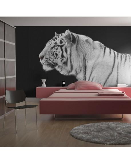 Stenska poslikava White tiger