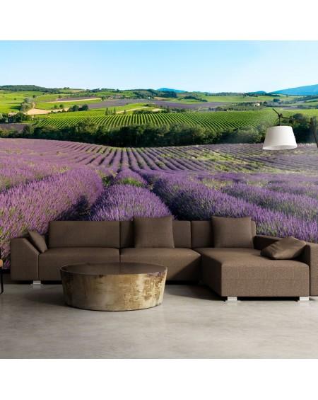 Stenska poslikava - Lavender fields