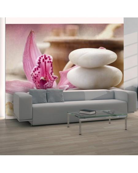 Stenska poslikava - Zen and spa