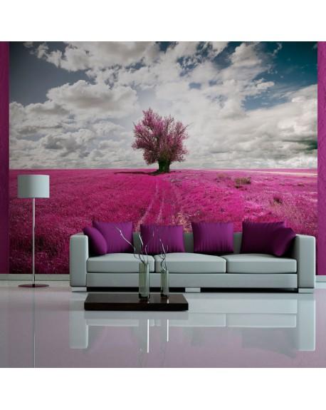 Stenska poslikava Magenta meadow