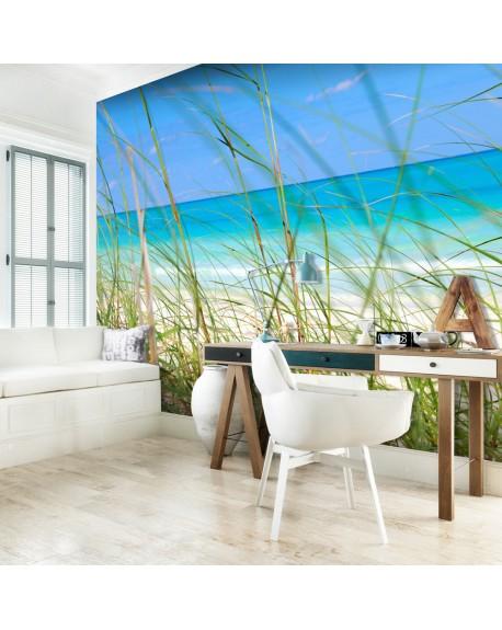Stenska poslikava Tropical journey
