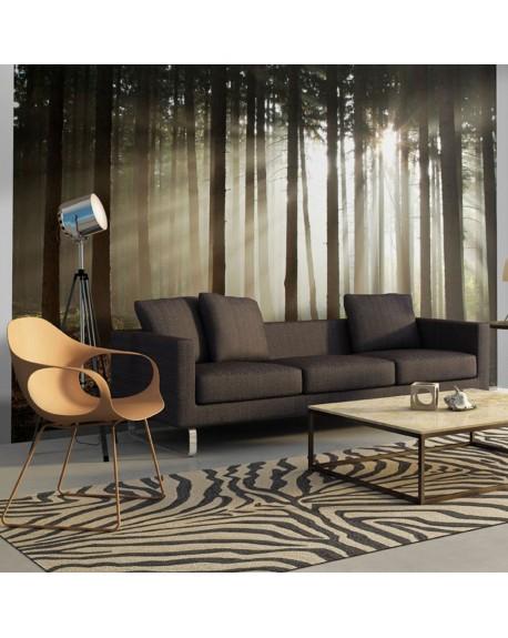 Stenska poslikava Coniferous forest