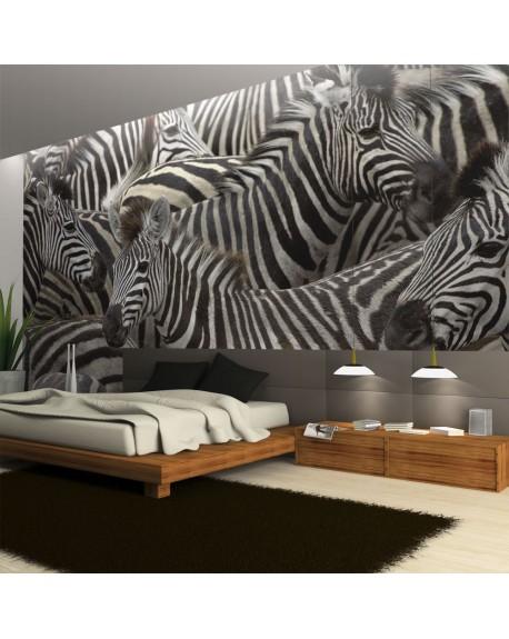 Stenska poslikava Herd of zebras