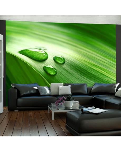 Stenska poslikava Leaf and three drops of water
