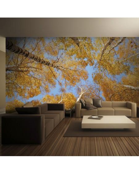 Stenska poslikava - Autumnal treetops