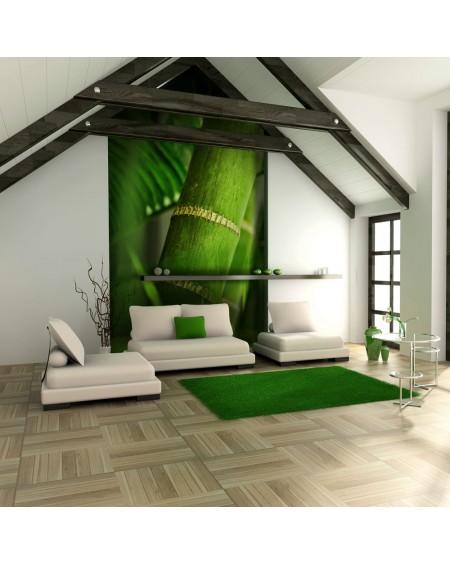 Stenska poslikava - bamboo - detail