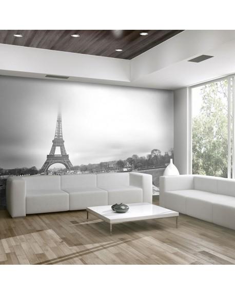 Stenska poslikava Paris Eiffel Tower