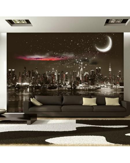 Stenska poslikava Starry Night Over NY