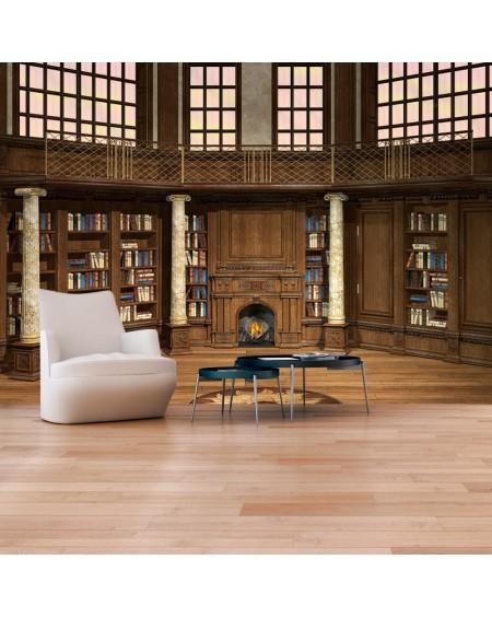 Stenska poslikava Library of Dreams