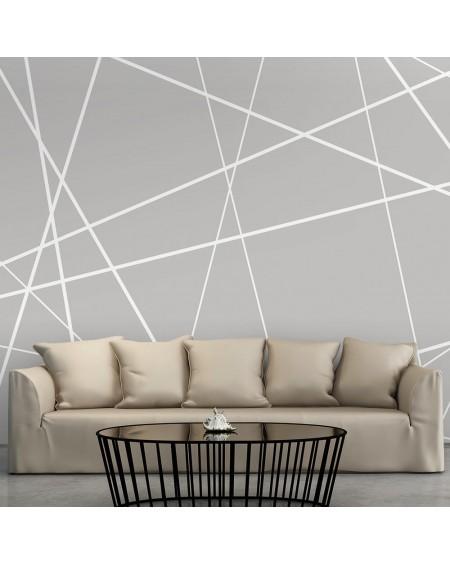 Stenska poslikava Modern Cobweb