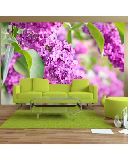 Stenska poslikava Lilac flowers