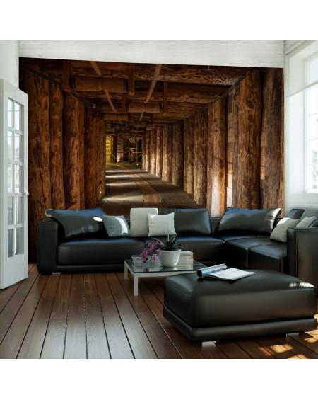 Stenska poslikava Wooden passage