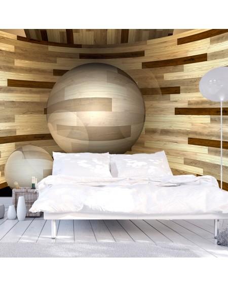 Stenska poslikava Wooden orbit
