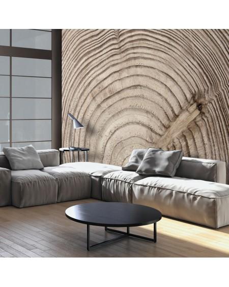 Stenska poslikava Wood grain