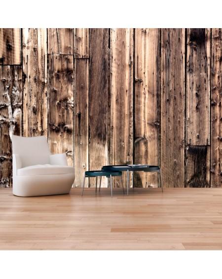 Stenska poslikava Poetry Of Wood