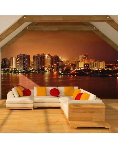 Stenska poslikava - Welcome to Miami