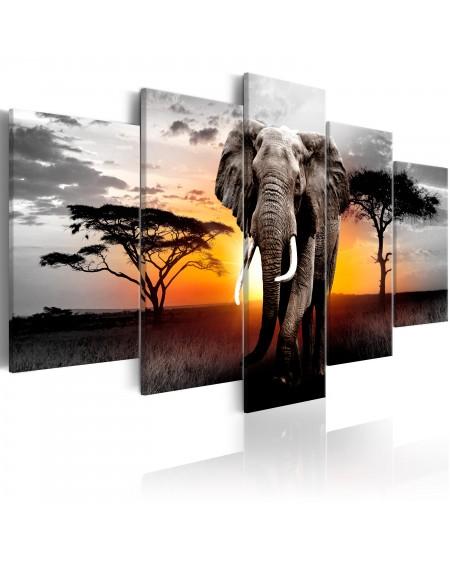 Slika Elephant at Sunset