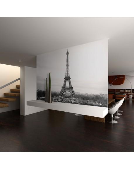 Stenska poslikava Paris black and white photography
