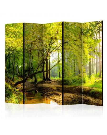 Španska stena Forest Clearing II [Room Dividers]