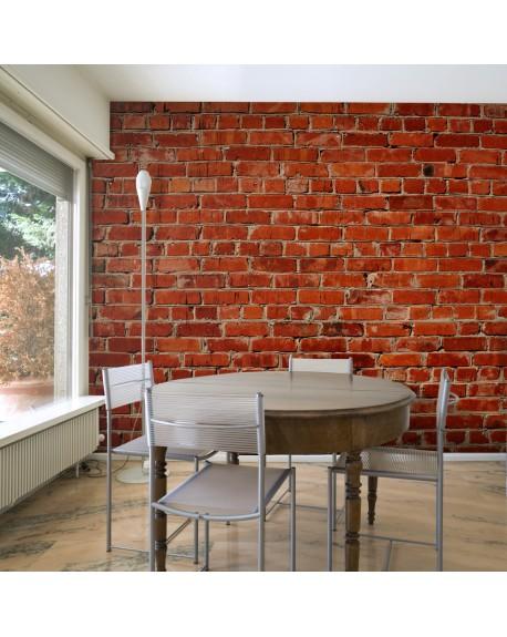 Stenska poslikava Brick