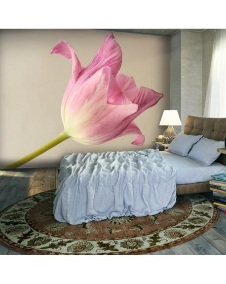 Stenska poslikava Pink tulip