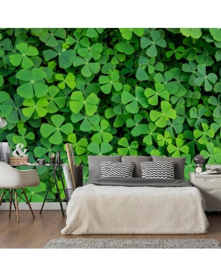 Stenska poslikava Green Clover