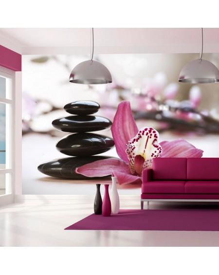 Stenska poslikava - Relaxation and Wellness