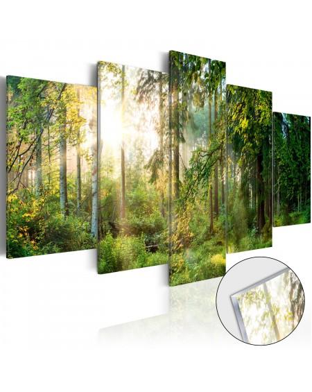 Akrilni tisk Green Sanctuary [Glass]