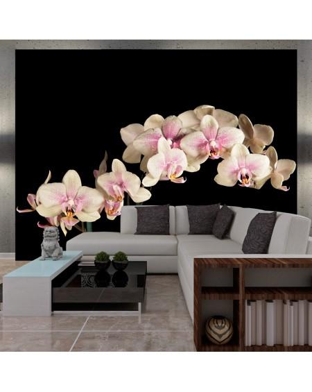 Stenska poslikava - Blooming orchid